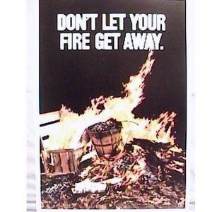 Vintage 1971 Smokey Bear Forest Fires Poster